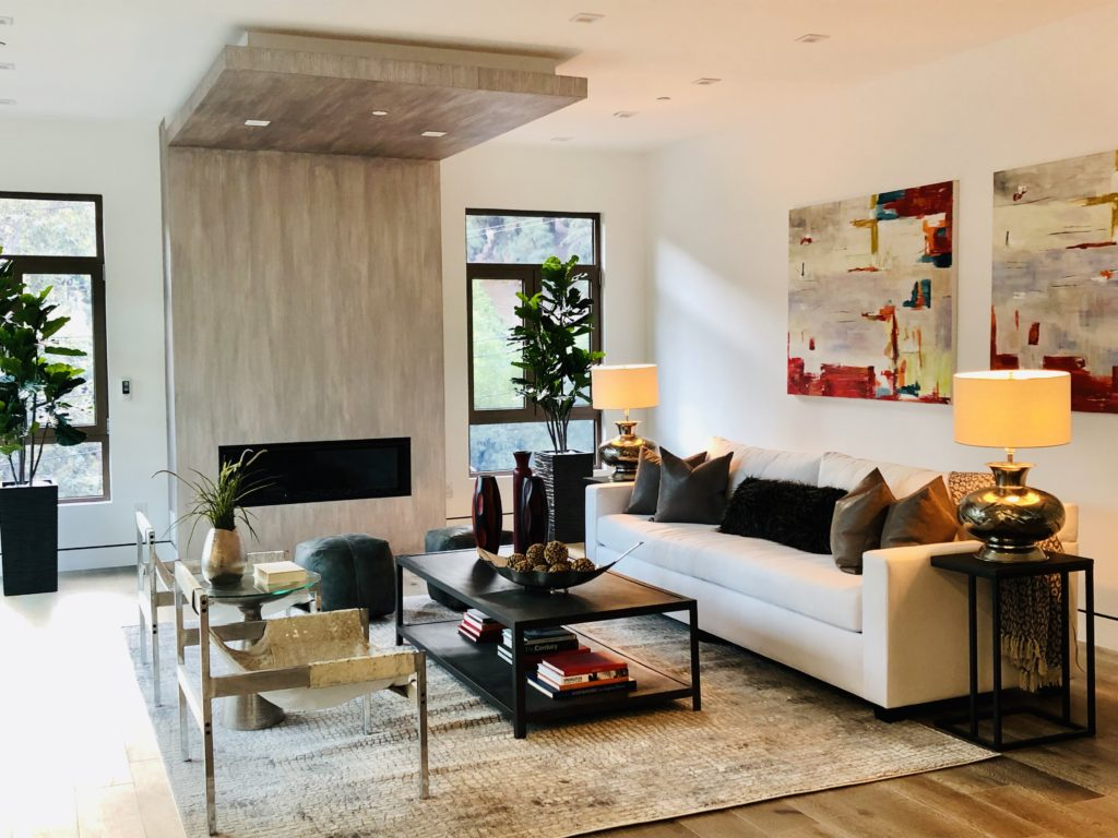 Home Staging Modern Living Room